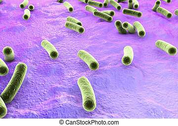 Bacteria on surface of skin, mucous membrane or intestine,...