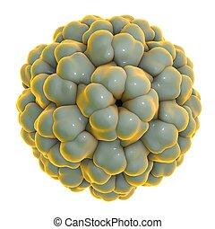 Brome mosaic virus