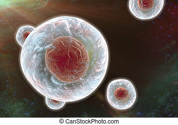 Illustratiion of human cells