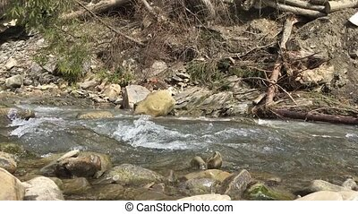 Mountain river in sunny day with audio. Fast stream.