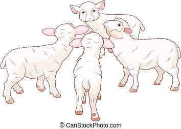 Sheep Group - Illustration of very cute sheep group stands...