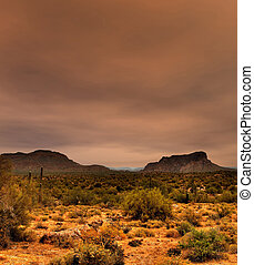 Sonora Desert Arizona - The Sonora desert in central Arizona...