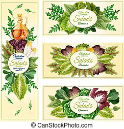 Salad leaf vegetable banner set - Salad leaf and vegetable...