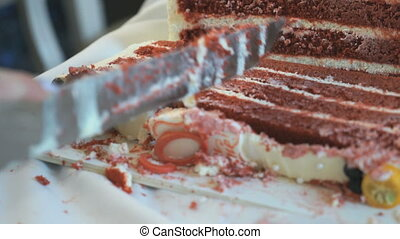 Waiter cuts the wedding cake into pieces. Close up - Waiter...