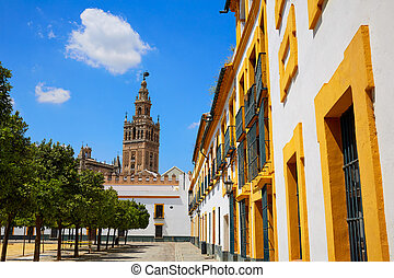 Seville cathedral Giralda tower from Alcazar of Sevilla...