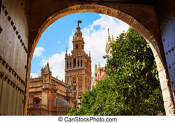 Seville cathedral Giralda tower Andalusia Spain - Seville...