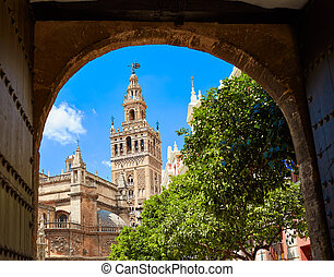 Seville cathedral Giralda tower from Alcazar arch door of...