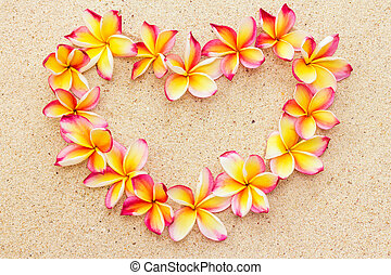 Heart made of frangipani or plumeria flowers on sand, top view