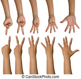 Set Of Woman Counting Hands - Set of woman counting hands...
