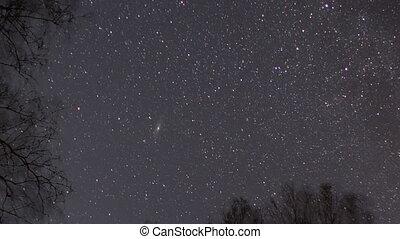 Starry sky in winter. UltraHD (4K)