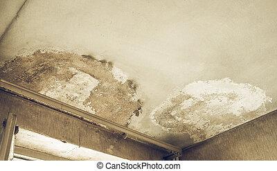 Vintage looking Damp moisture - Vintage looking Damage...