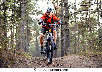 Cyclist Riding the Bike on the Trail in the Forest. Extreme Sport.