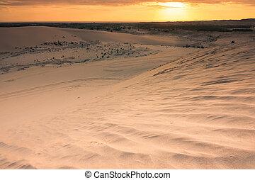 sand dune vietnam - Mui Ne  White Sand Dune in Vietnam