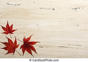 background with red leaves