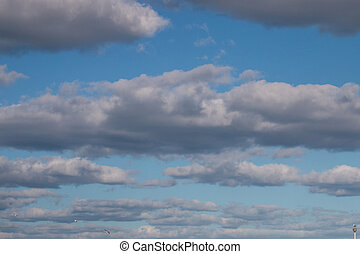Sparse cloudy gray clouds - View of sparse cloudy gray...