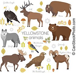 Yellowstone National Park animals set grizzly, moose, elk,...