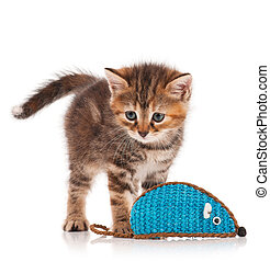 Cute little kitten caught toy mouse isolated on white...
