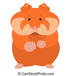 Isolated hamster - Isolated cute hamster on a white...