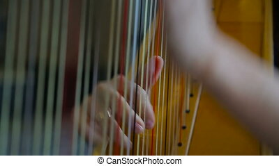 Woman playing the harp close-up