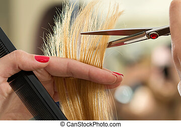 Close up view of female hairdresser hands cutting hair tips....