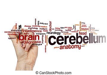 Cerebellum word cloud concept