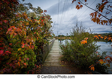 Autumn color and pier at Oak Creek Landing, in Newcomb, near...
