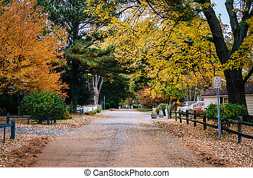 Autumn color along a street in St. Michaels, Maryland.