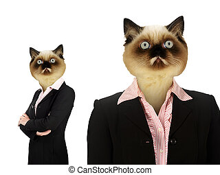 Set Of Business  Woman With Cat Head