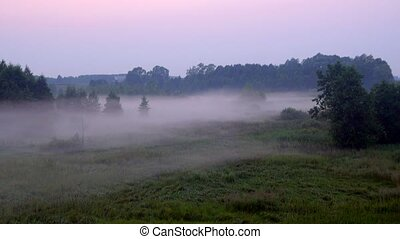 a beautiful fog shrouds the land in twilight - a beautiful...