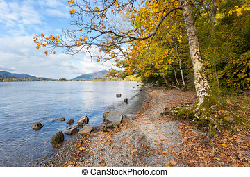 Shore of Derwent Water in Autumn - Autumnal Trees on the...
