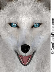 3D Rendering Arctic Fox - 3D rendering of a head of an...