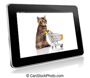 british cat with shopping cart isolated on white. pet shop...