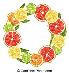 Frame with citrus fruits slices. Mix of lemon lime...