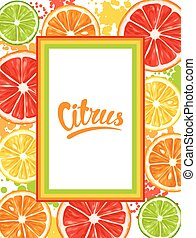 Frame with citrus fruits slices. Mix of lemon lime grapefruit and orange