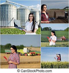 Barley growing and harvesting collage. Images of young woman...