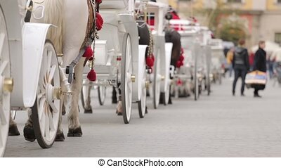 Carriages with tourist in Krakow, Poland - Sightseeing...