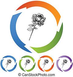 Rose Stem