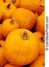 Stacked Pumpkins - A large stack of pumpkins in the vertical...