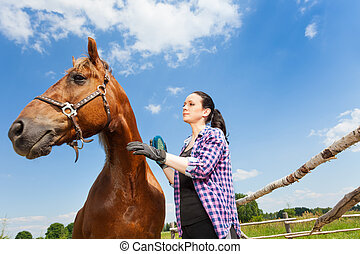 Woman grooming horse against blue sky background - Bottom...