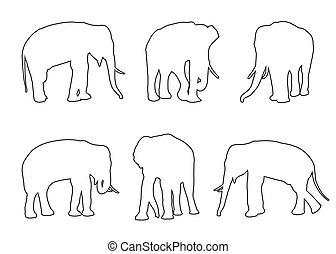 Elephant Set Path on the white background