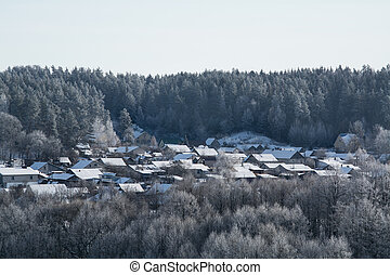 House in a snowy forest in winter