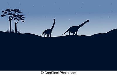 silueta, colina,  argentinosaurus