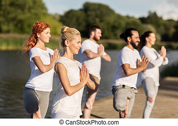 people making yoga in tree pose on mat outdoors - yoga,...