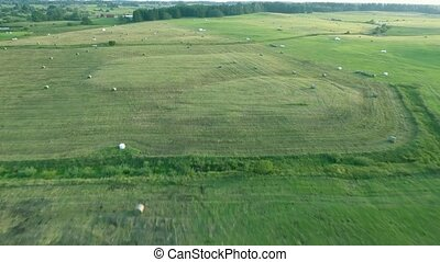 green meadows aerial view - green meadows at summer. aerial...