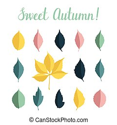 Vector set with autumn leaves isolated on white background