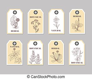 Organic herbs labels for natural products and culinary