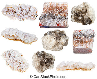 various halite (rock salt) and sea salt minerals isolated on...