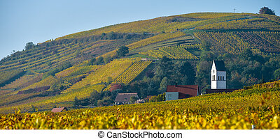 Katzenthal in the vineyard of Alsace, France