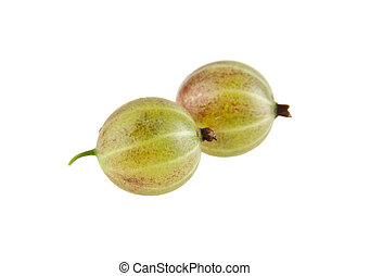 gooseberry isolated on a white background