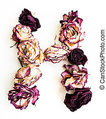 Letter H. - Rose dried Initials letter H.